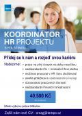 Obrázek k inzerátu Realizátor agenturního zaměstnávání s PL, Mikulov