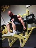 Obrázek k inzerátu Nakládací fitness stroje typu hammer