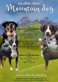 Obrázek k inzerátu Appenzellský salašnický pes s PP